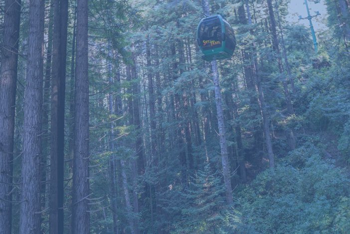 Trees of Mystery Sky Trail - Soar Through the Tops of Redwoods in Del Norte County, California - The Redwoods Coast