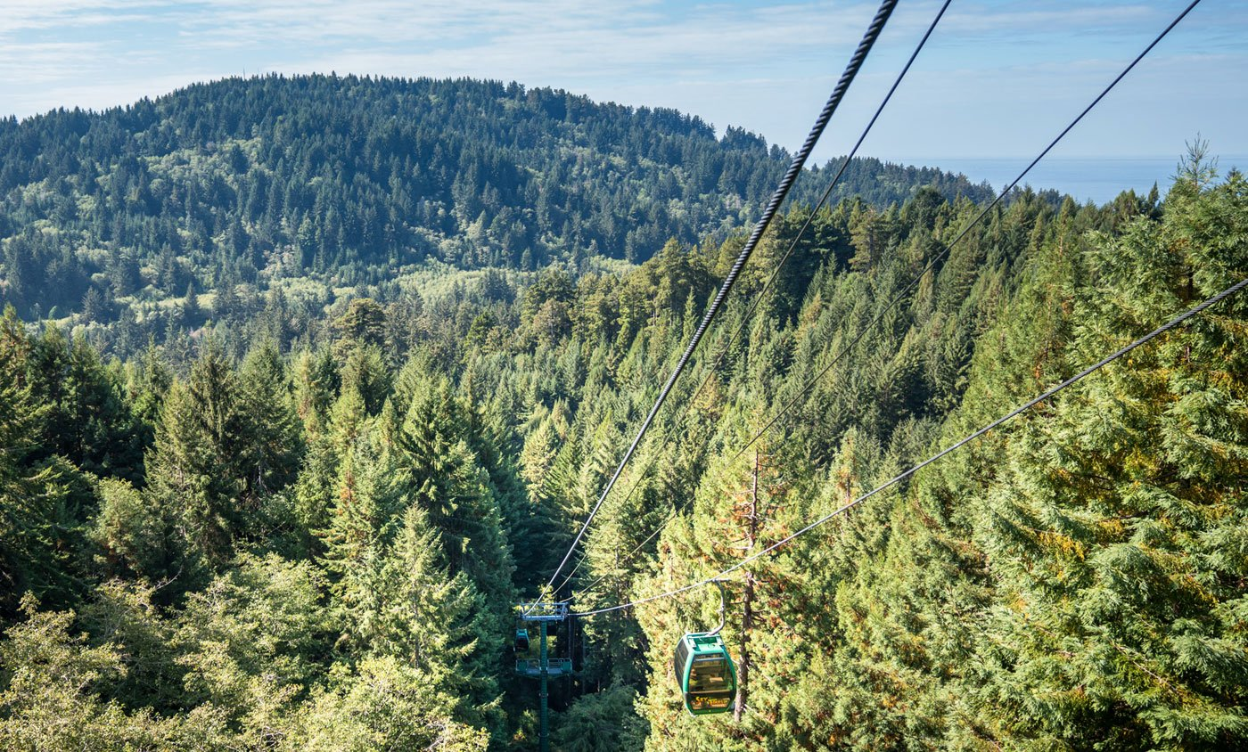 Trees of Mystery Sky Trail in Del Norte County, California